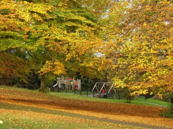 chelsea park, sheffield